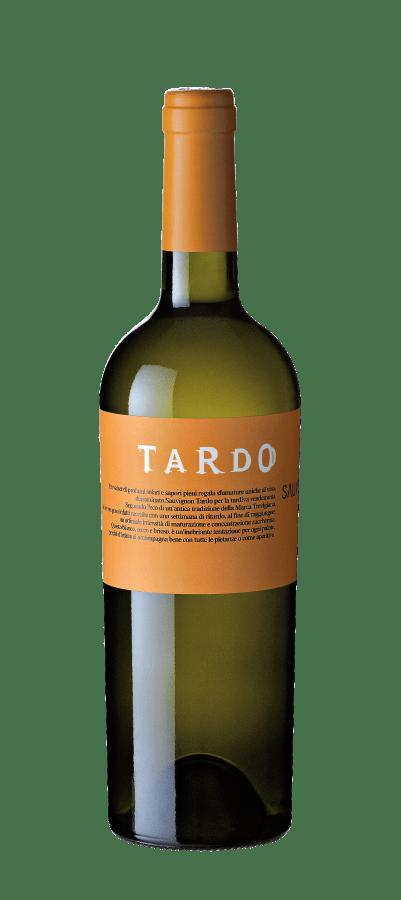 VILLA-SANDI-TARDO